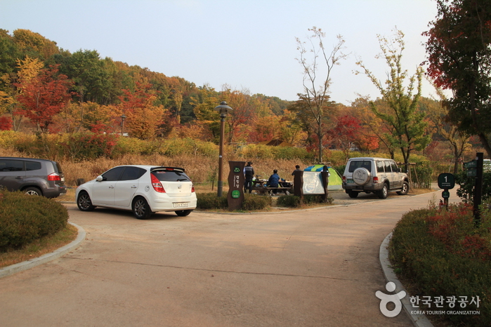 Jungnang Camping Forest (중랑캠핑숲)