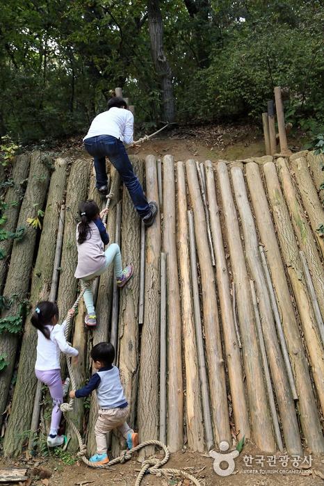 통나무 벽에 달린 줄을 잡고 줄줄이 올라가는 어린이들