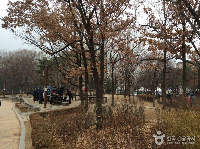 Cheonho Park (천호공원)