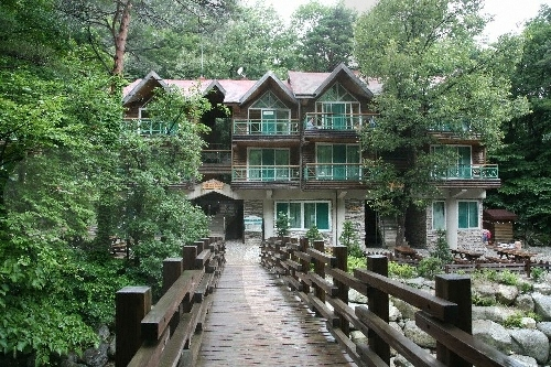 Nationaler Erholungswald Daegwallyeong (국립 대관령자연휴양림)