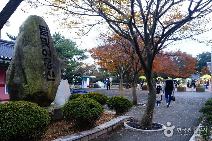 Дорога Тальмачжи на Хэундэ (해운대 달맞이길)17