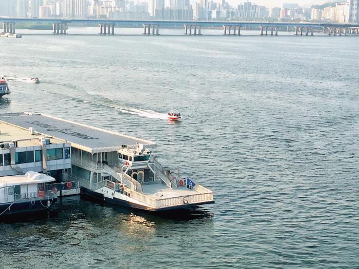 Hangang River Ferry Cruise (이랜드크루즈 (한강유람선))
