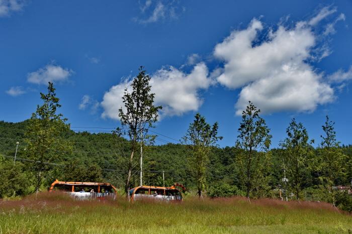 국립백두대간수목원  사진9
