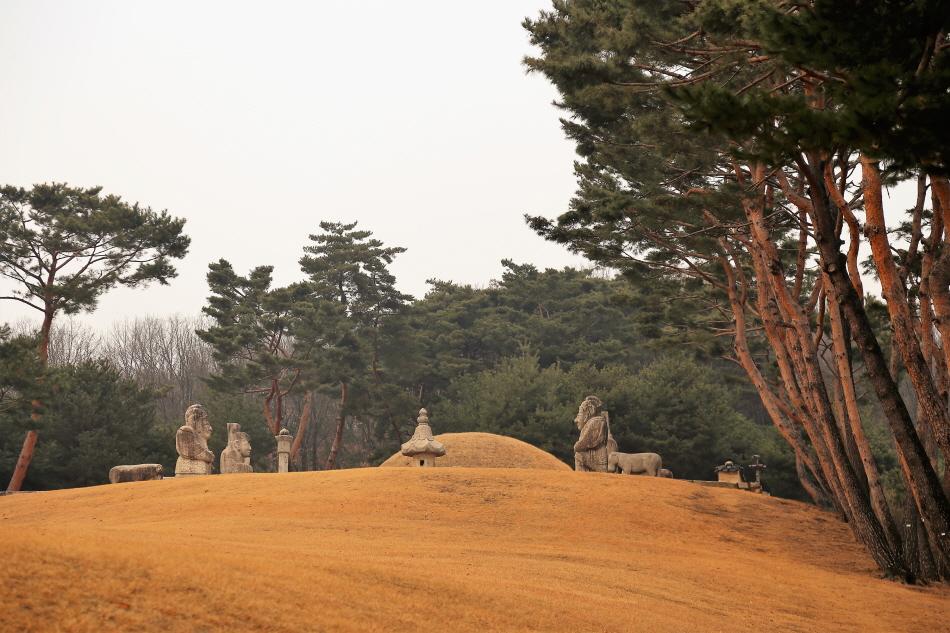 중종의 세 번째 왕비 문정왕후가 묻힌 태릉