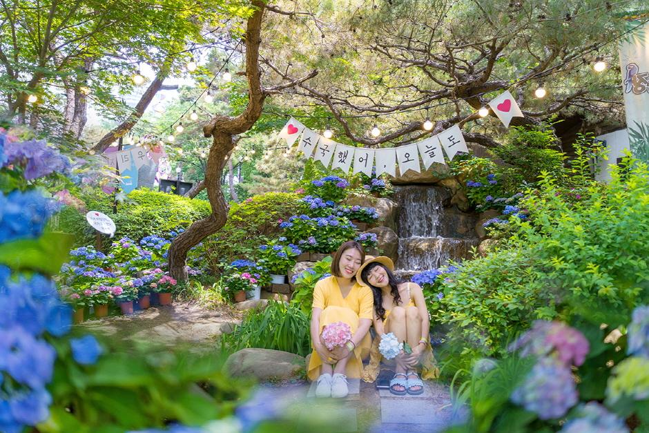 이월드 봄꽃시즌 3 : 수국아일랜드