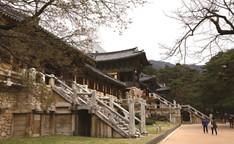 Bulguksa Temple Stay (불국사 템플 스테이)
