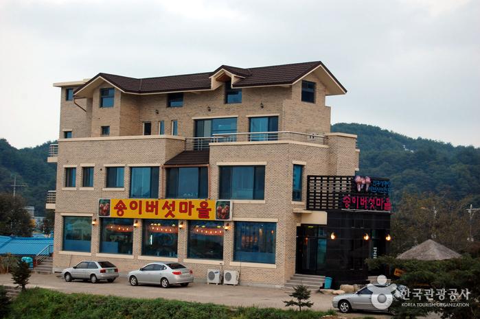 松茸村(송이버섯마을)