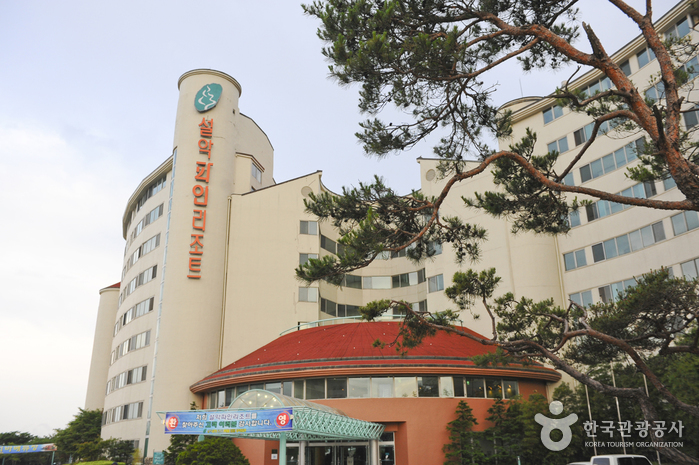 Seorak Pine Resort (설악파인리조트)