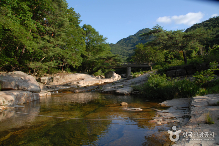 Songgye Valley (송계계곡...