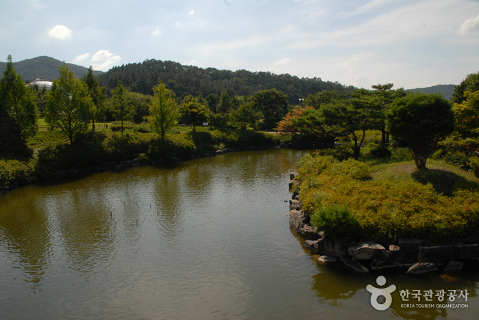 Geumgang Recreational Forest (Arboretum, Forest Museum) (금강자연휴양림(금강수목원,산림박물관))