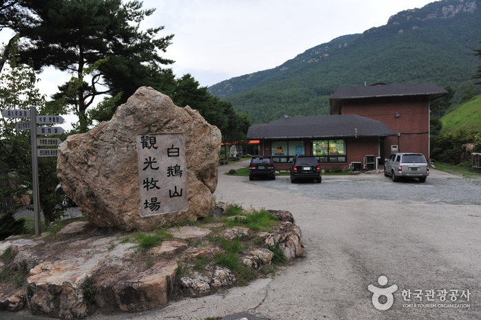 백아산 관광목장