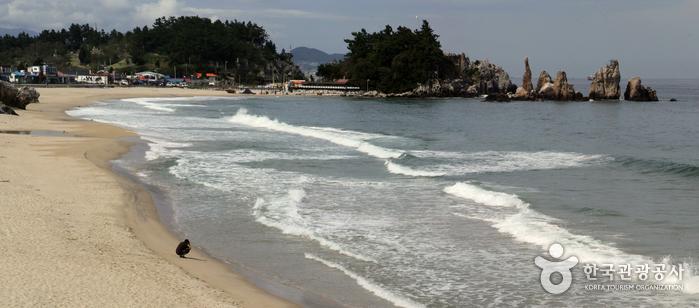 湫岩海岸(추암해변)