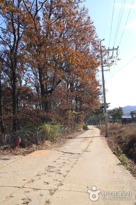 [Parcours 3 du chemin Ganghwa] Chemin en destination de Neungmyo