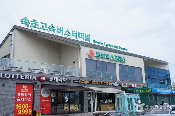 Терминал скоростных автобусов города Сокчо (속초고속버스터미널)