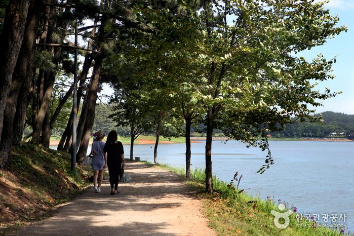 호수와 숲이 어우러진 수변산책로