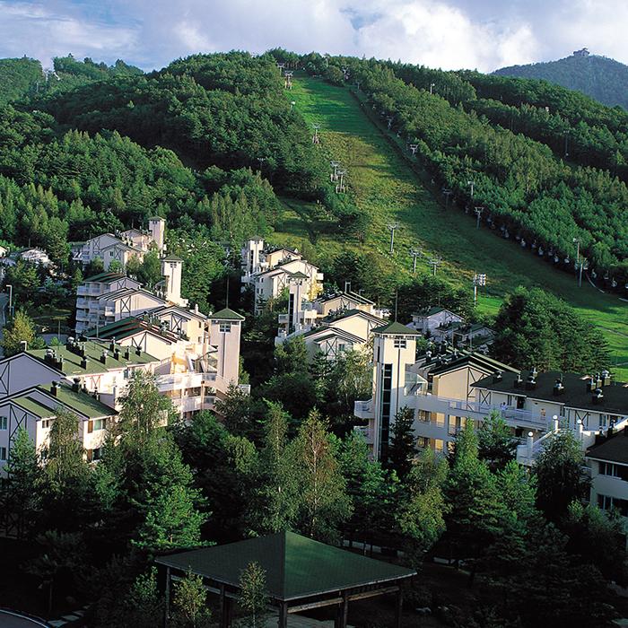 Yongpyong Resort Villa Condo (용평리조트 빌라콘도)