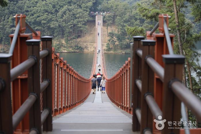 2018년 3월 개장한 마장호수의 흔들다리