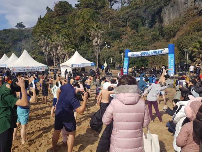 Festival de Natación de Pingüinos en el Mar de Invierno de Seogwipo (서귀포 겨울바다펭귄수영대회)
