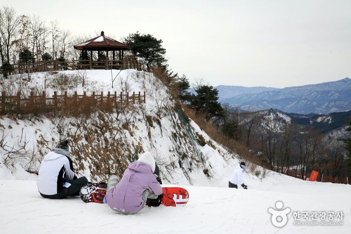 Wellihillipark Snow Park (웰리힐리파크 스노우파크)