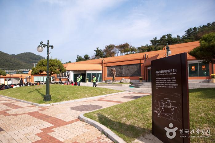 石壮里博物館(석장리박물관)