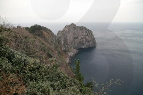 거북바위 및 향나무 자생지 (울릉도, 독도 국가지질공원)