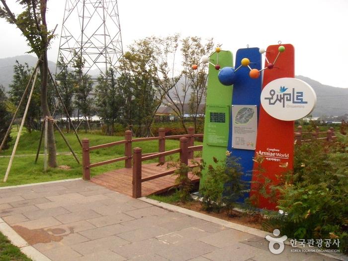 Trash: Ganghwa Mugwort Festival (강화 약쑥축제)