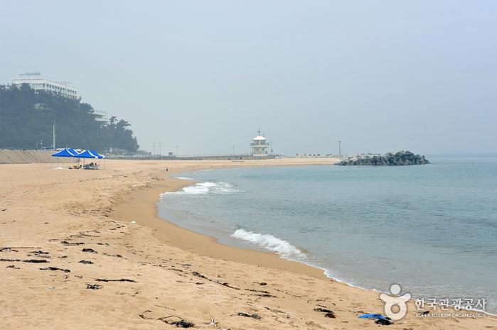 강문해변 (사진제공 : 강릉시청)