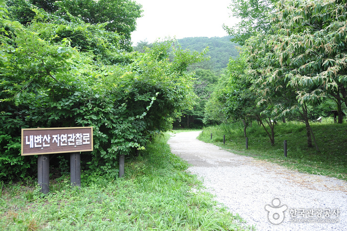 Naebyeonsan Mountain ()
