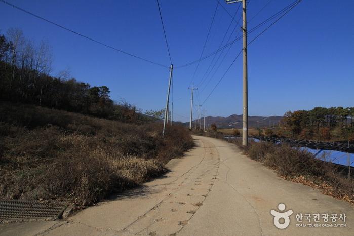[Ganghwa-Wanderweg Route 3] Weg zu den Grabstätten ([강화 나들길 제3코스] 능묘 가는 길)