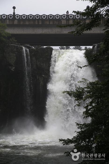 Cheonjeyeon Falls (천제연 폭포)
