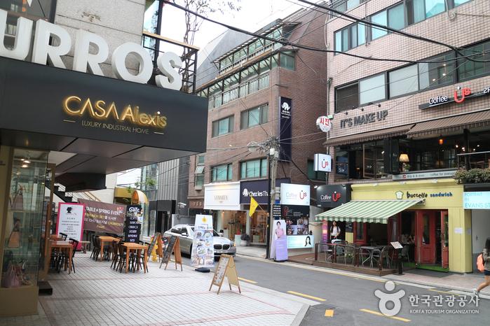 신사동 가로수길 사진3