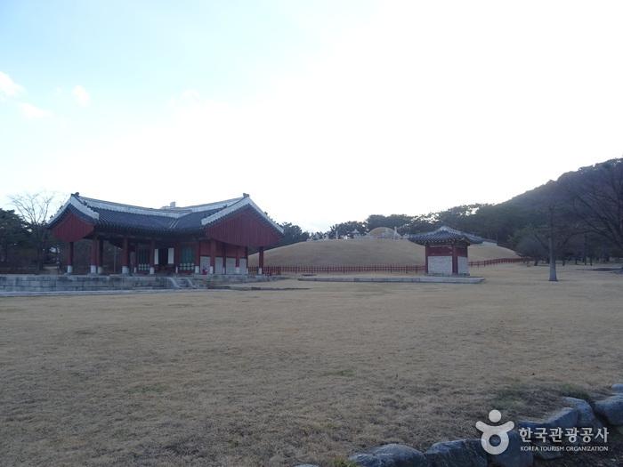 Köngliche Grabanlage Uireung [UNESCO-Weltkulturerbe] (서울 의릉 [유네스코 세계문화유산])