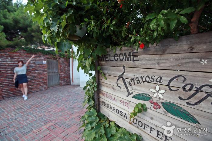 테라로사 커피공장 나무 간판