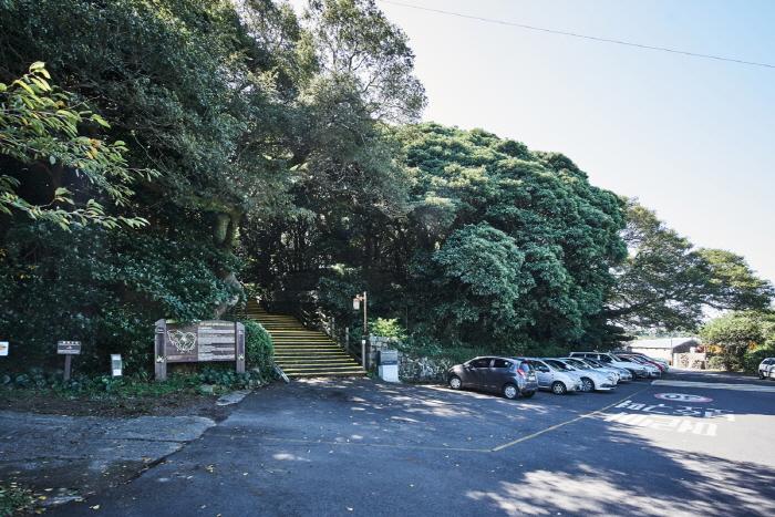 금산공원(납읍난대림지대)