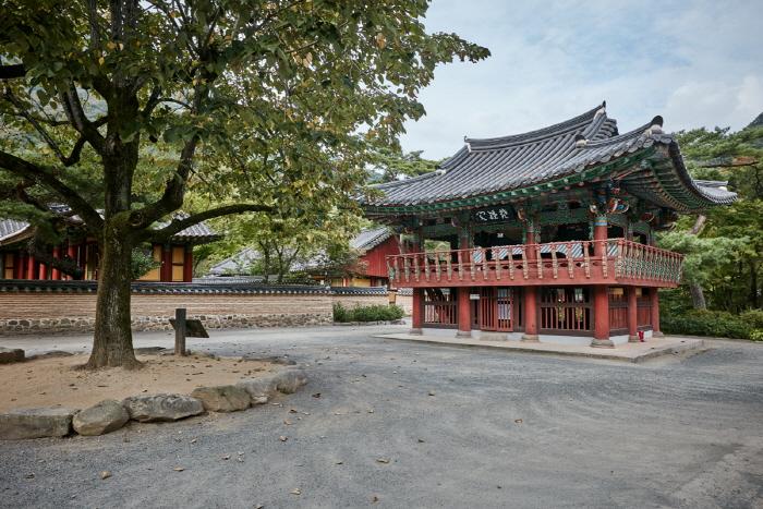 Tempel Baegyangsa (고불총림 백양사)