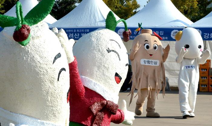 강화고려인삼축제 2018