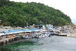 [해양수산부 선정 아름다운 어촌] 외옹치마을