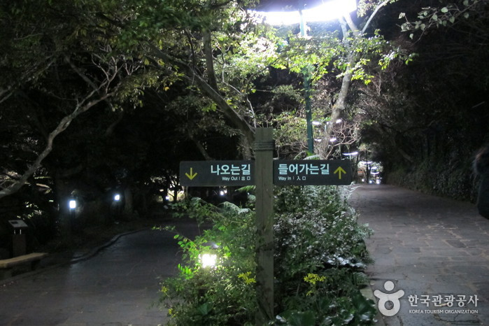 Водопад Чхончжиён (Национальный геопарк Чечжудо) (천지연폭포 (제주도 국가지질공원))6