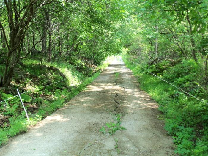 DMZ生態平和公園(DMZ 생태평화
