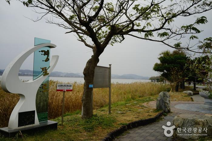 Озеро Кёнпхохо (경포호)6