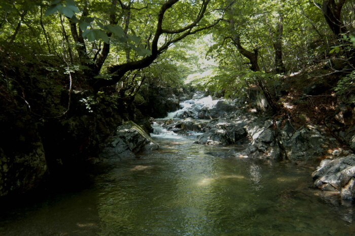 Jukgyegugok Valley (죽계구곡)