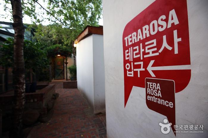 골목처럼 이어진 테라로사 입구가 독특하다.