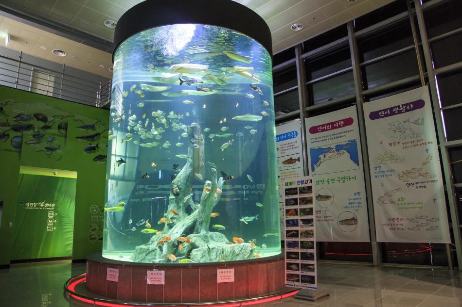 섬진강어류생태관 입구에 있는 원통형 수조