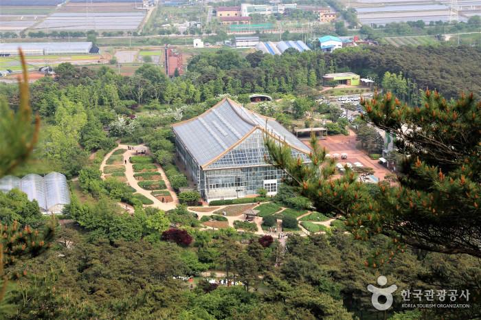 정상에서 바라본 식물원 전경
