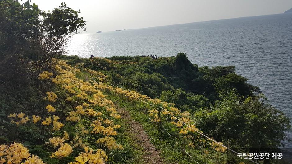 辺山半島国立公園(변산반도국립공원)