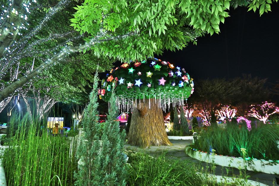 청도 프로방스 빛축제