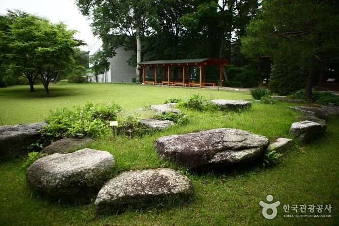 Hongneung Arboretum (홍릉수목원)