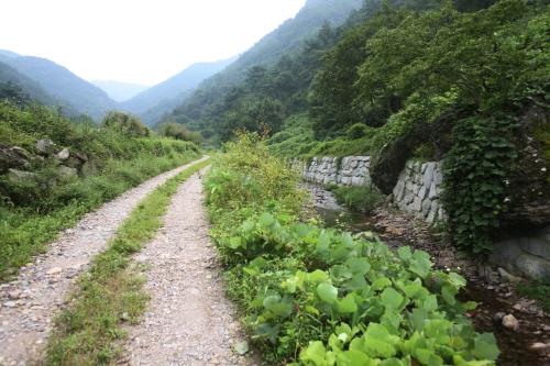 봉하마을 사진4