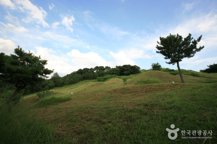 Bullo-dong Ancient Tomb Park (대구 불로동 고분군)