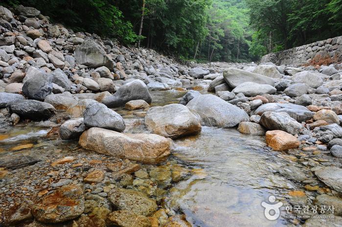 Sibiseonnyeotang-Tal (십이선녀탕/탕수동계곡)